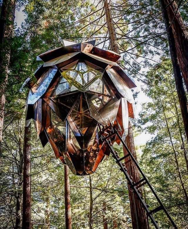 Luxury Tree Houses Designs: Tree House Goals In 2019