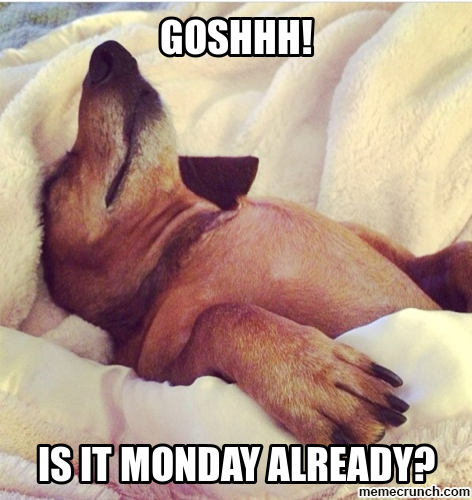 It S That Day Of The Week Again Morning Quotes Funny Monday Morning Humor Monday Humor