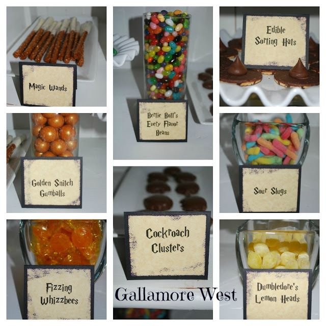 Gallamore West: Harry Potter Birthday Party!