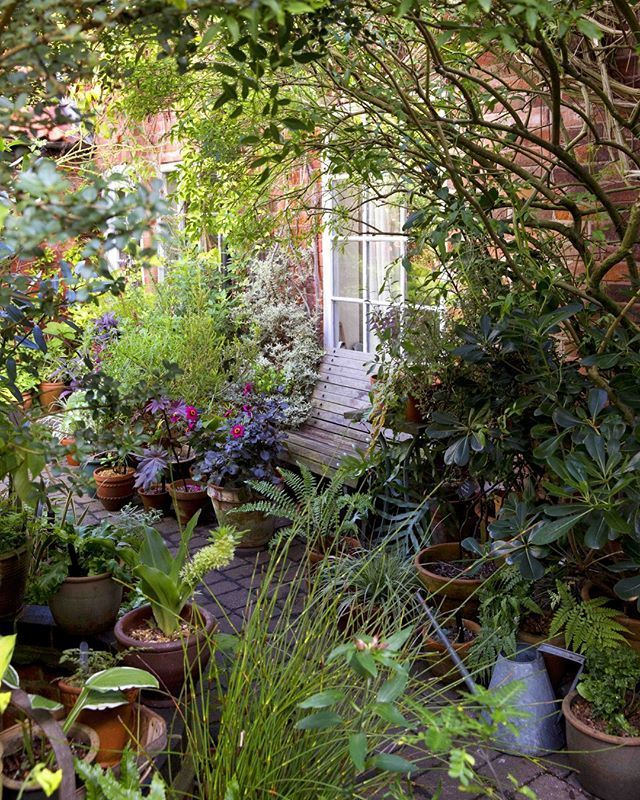 "BBC Gardeners' World Magazine on Instagram: ""If you have a small space, or tricky soil conditions, container gardens are a great alternative. Mary Thomas' idyllic Nottinghamshire…"""