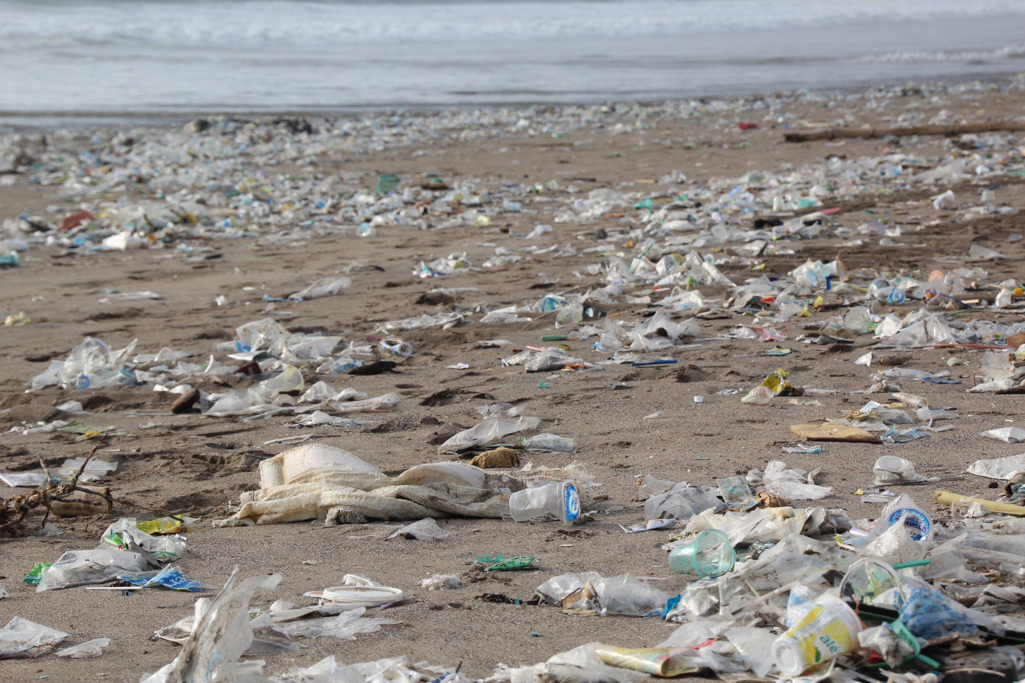 Le Concours Mondial Pour Les Innovations Visant A Lutter Contre La Pollution Plastique Marine Est De Pollution Pollution Plastique Protection Environnement