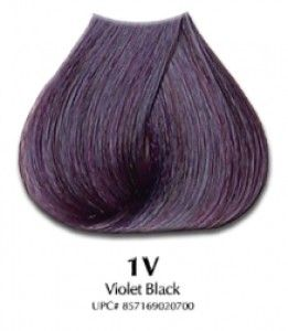 Violet Black Hair Color For Black Hair Violet Hair Colors Beauty Hair Color