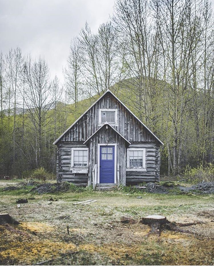 Weather Worn Grey With High Alpine Mineral Blue In Hope Alaska By Wanderingalaskan Cozy Cabin Cabins In The Woods Cabin