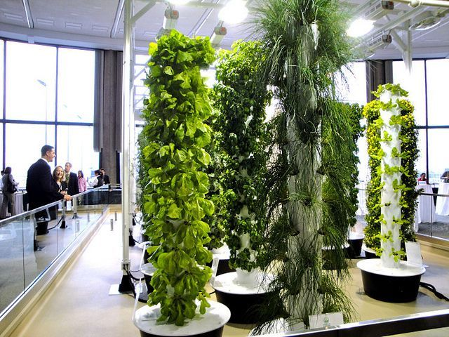 Vertical Aeroponic Tower Garden Systems At Ou0027Hare Airport Supplies Fresh  Organic Produce For About