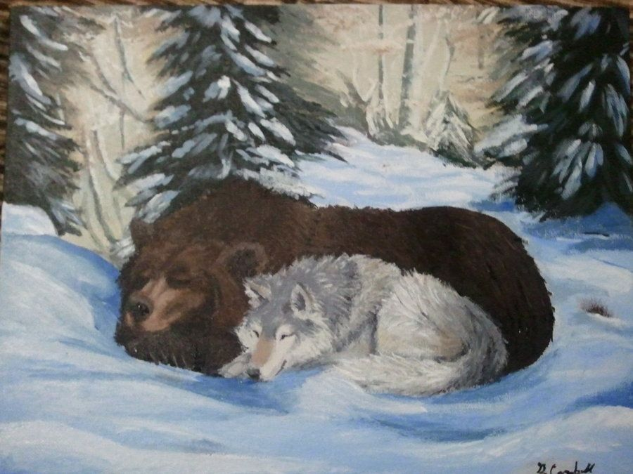 Картинки волк и медведь