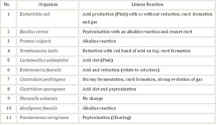 Litmus Milk Test (Procedure)  Microbiology Virtual Lab II - histology assistant sample resume