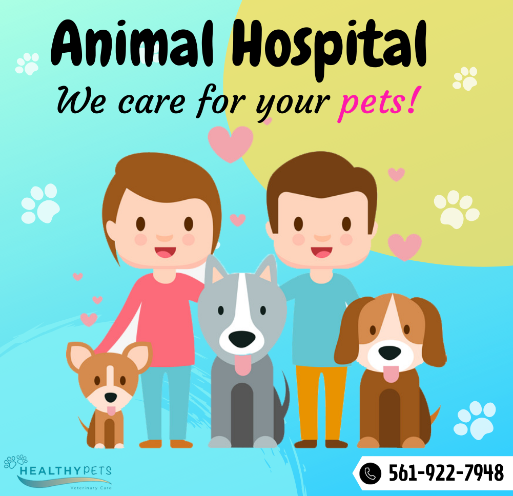 Preventative Health Care For Animals In 2020 Veterinary Care Healthy Pets Animal Hospital