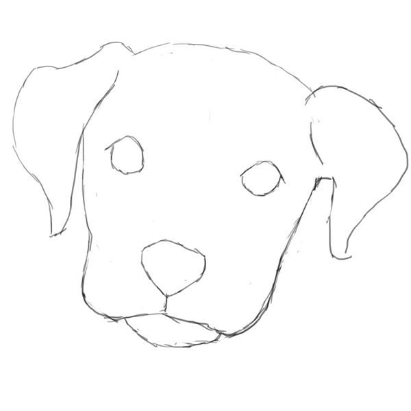 Learn How To Draw A Dog In Photoshop Dog Drawing Simple Cute