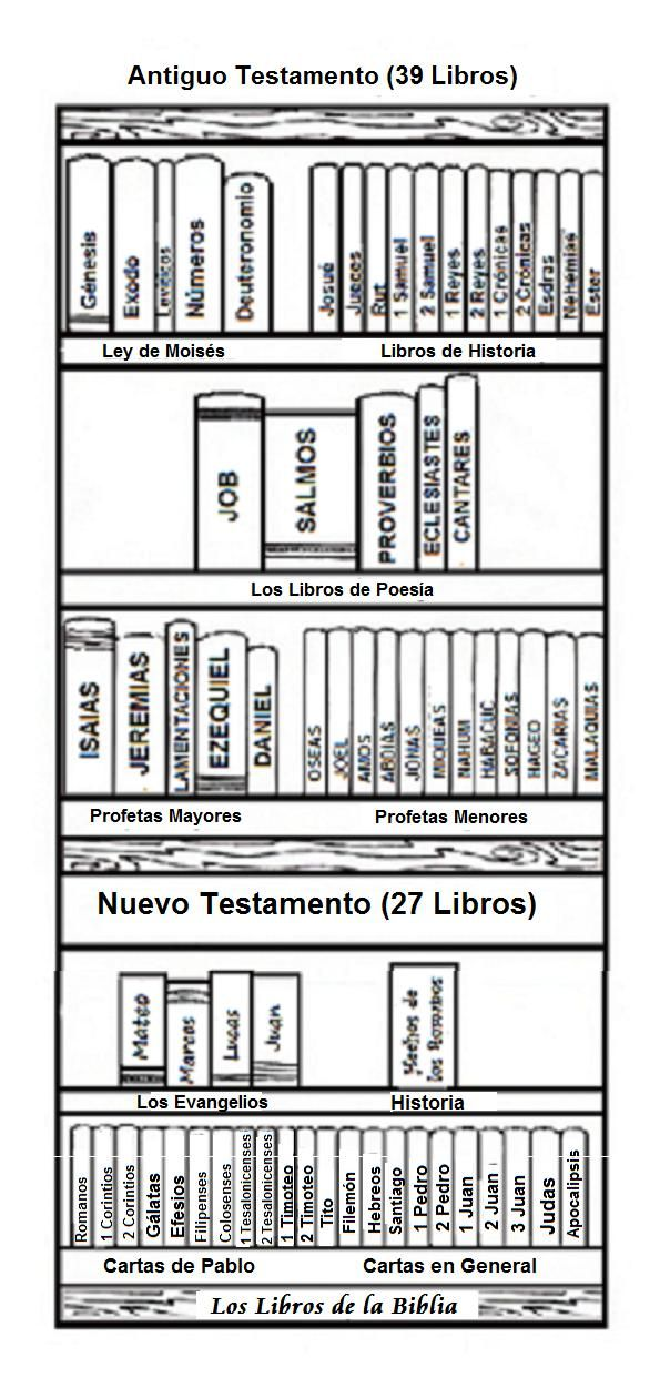 Maribel Seño de Reli: LIBROS DE LA BIBLIA   devocionario   Biblia ...