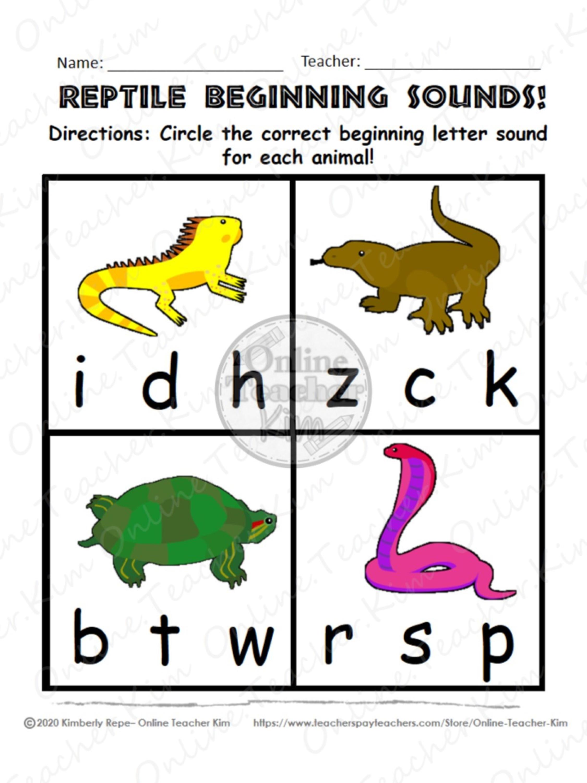 Reptile Worksheet Pack Printable Pdf 15 Pages Literacy Skills Printable Activities Activity Pack [ 3000 x 2250 Pixel ]