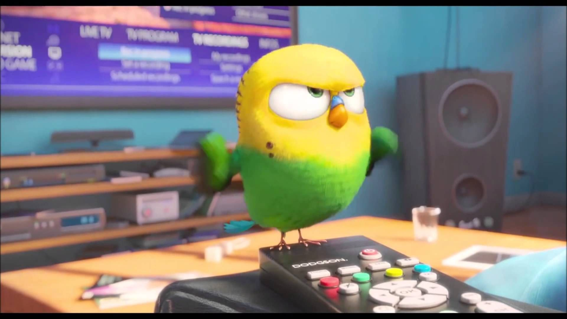 The Secret Life Of Pets Bird Google Search Secret Life Of Pets Secret Life Pet Trailer