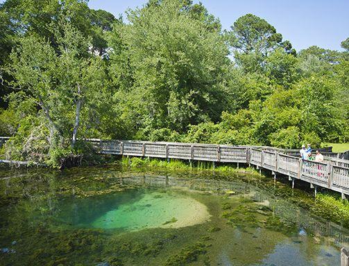 Magnolia Springs State Park | Georgia State Parks