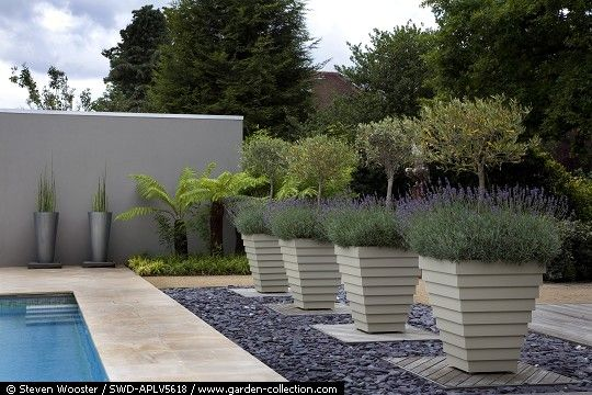 Pin By Swati Bolden On Outdoors Decor Pool Landscaping Hot Tub Outdoor Landscape Plan
