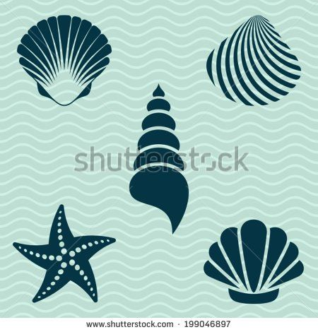 Set of various sea shells and starfish silhouettes - stock ...