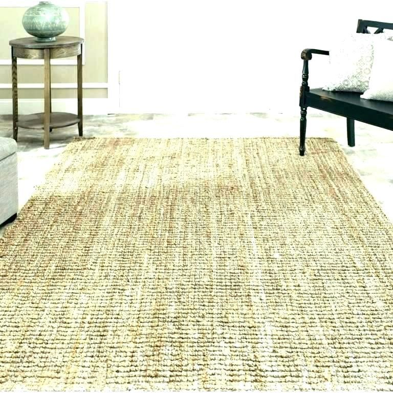 Washable Entryway Rugs