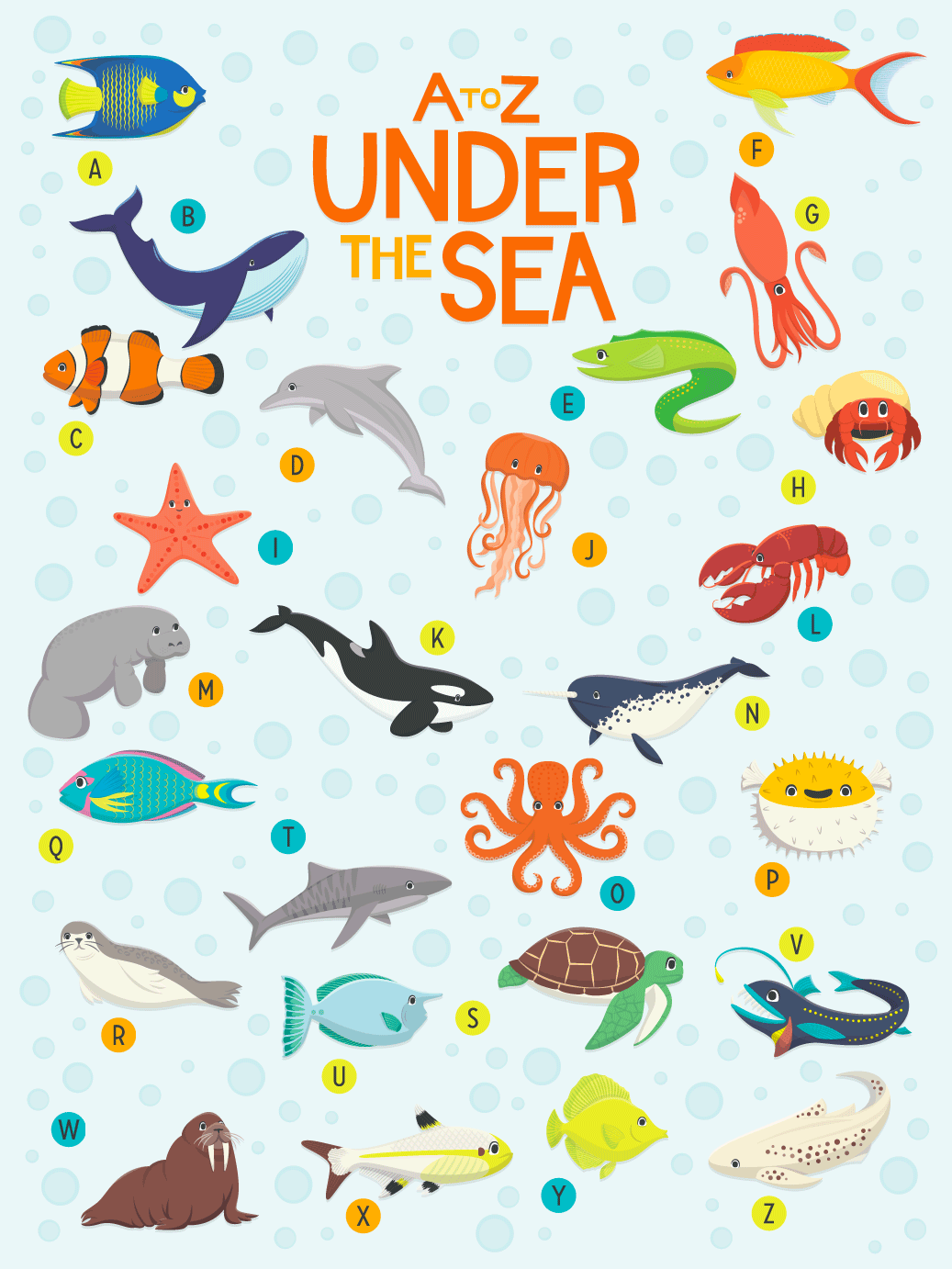 Can You Name These AZ Sea Animals? 🐠🐡🦀🐬🐢 Sea creatures