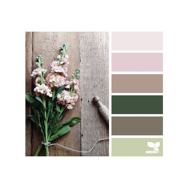 design seeds | for all who ♥ color ❤ liked on Polyvore featuring design seeds, color palettes, backgrounds, color and color inspiration