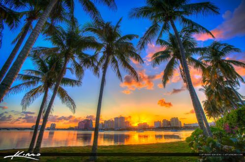 Coconut Tree Sunset West Palm Beach Florida Photography In