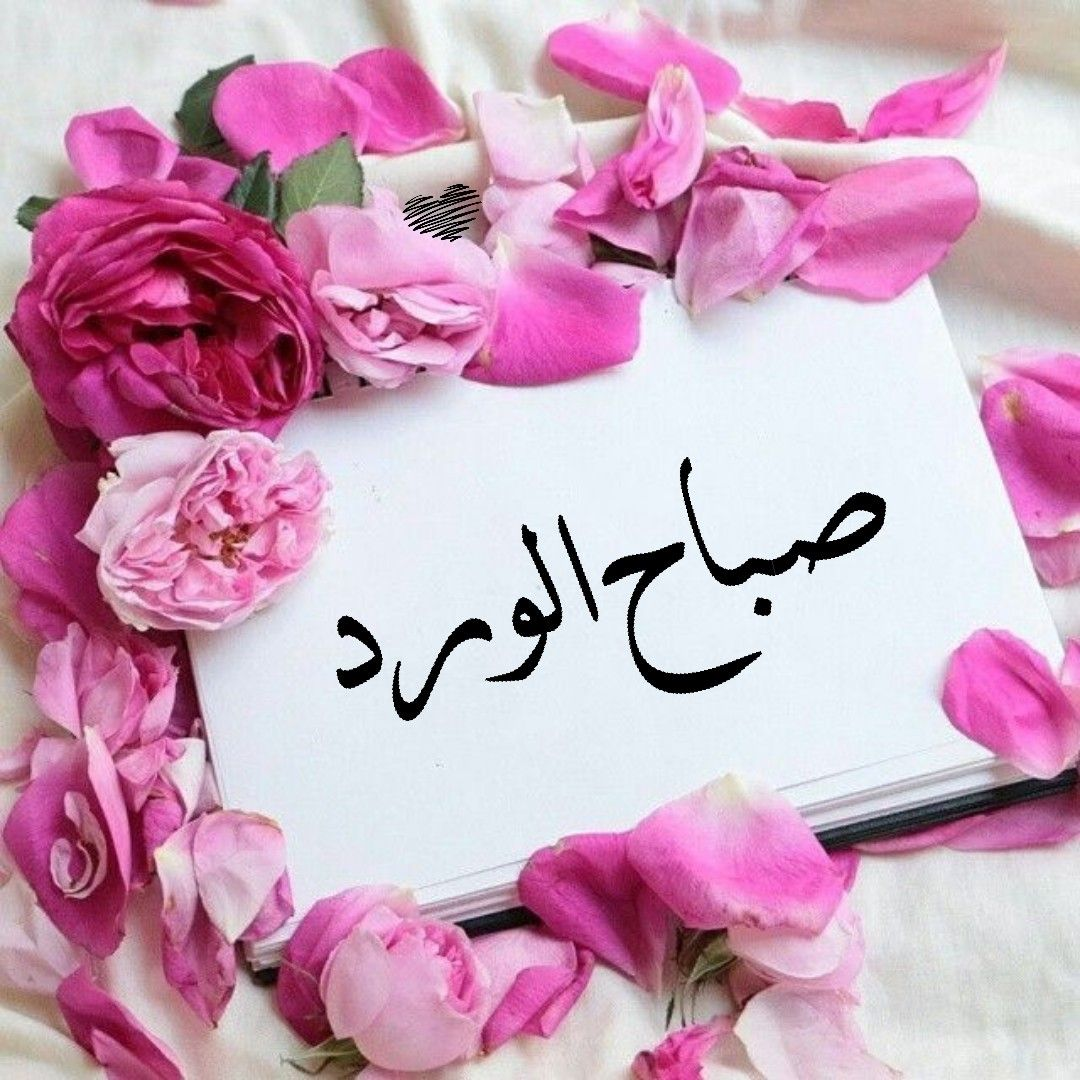صباح الورد Good Morning Flowers Good Morning Greetings Good Morning Arabic
