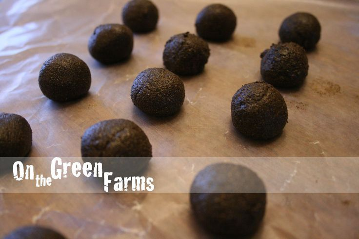 How to naturally deworm your animals farm animals dairy