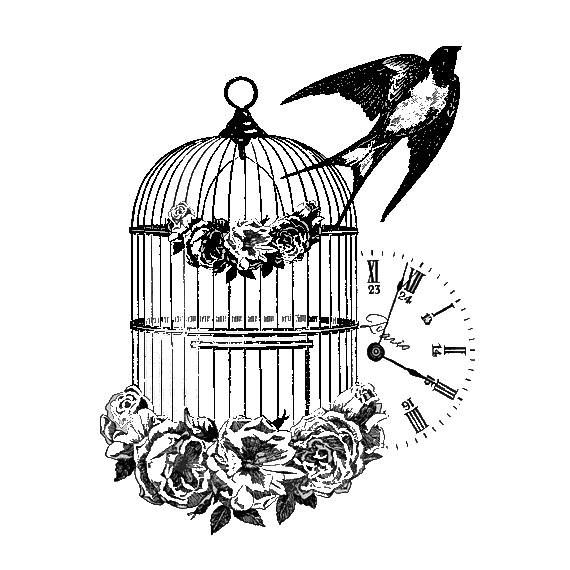 Vintage Bird Cage Image By Ashley Patterson On Tattoos Cage Tattoos Birdcage Tattoo