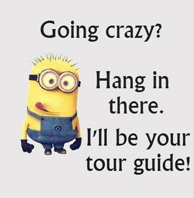 Going Crazy Minions Funny Funny Minion Quotes Funny Minion Memes