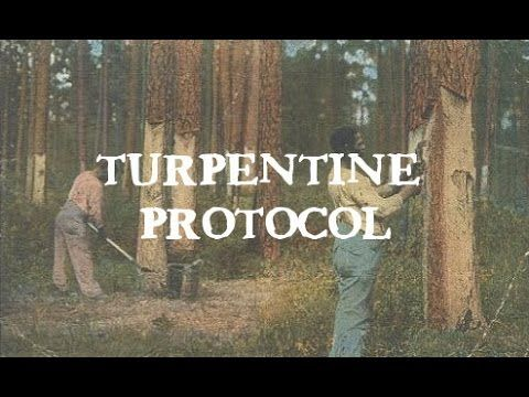 how to do the turpentine protocol with sugar cubes? - YouTube | How
