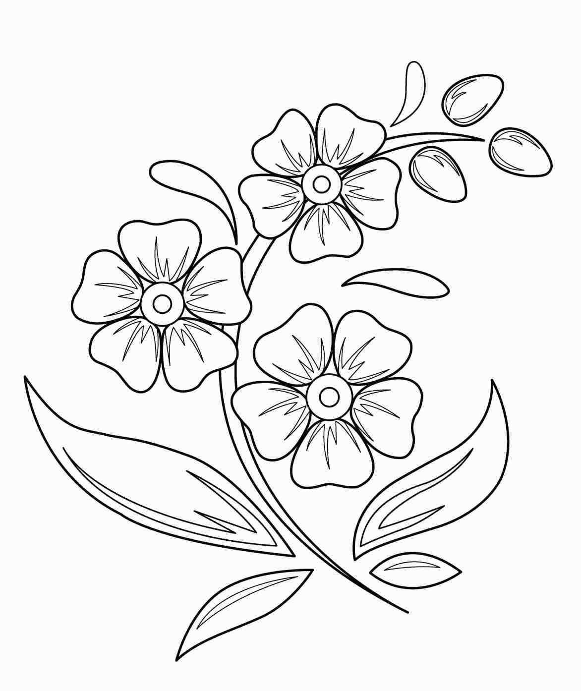 flower drawings for kids | Beautiful flower drawings, Easy ...