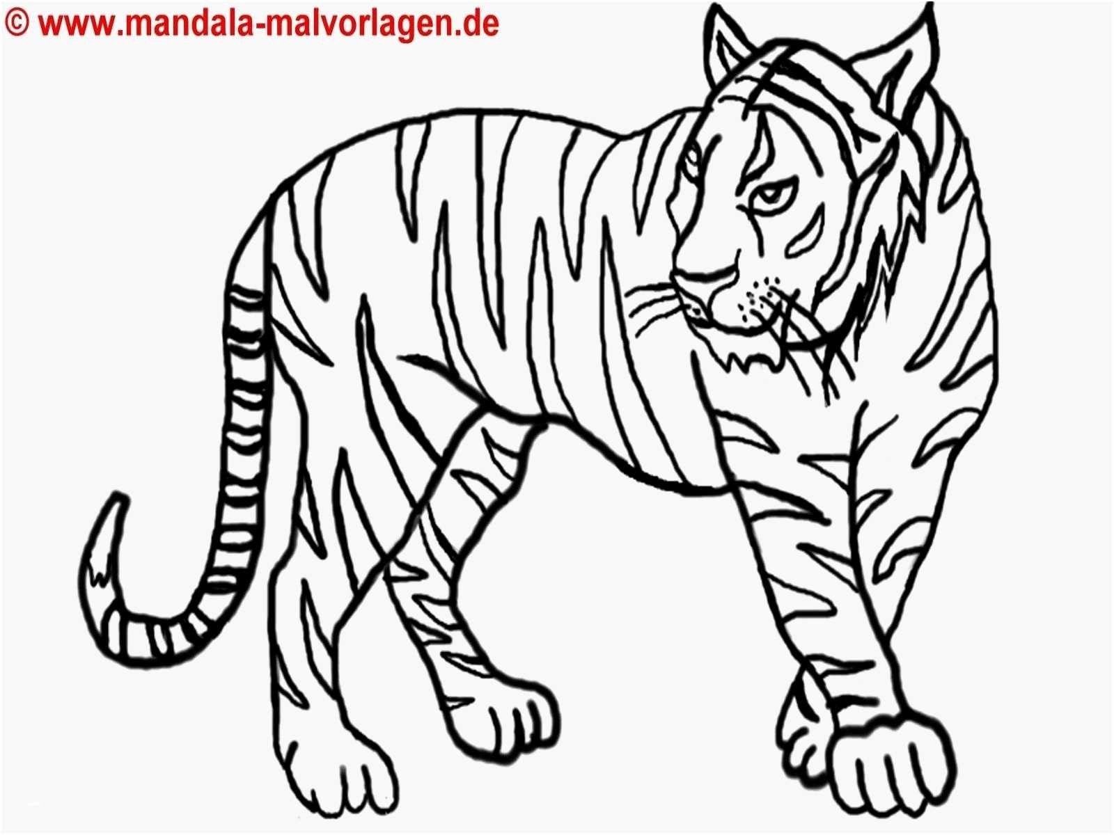 Frisch Ausmalbilder Tiere Groß   Animal tattoo, Lion ...