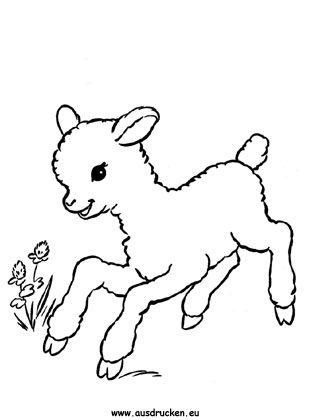 Ausmalbilder Osterlamm Mit Blume Ausdrucken Schafe Tattoo Ausmalbilder Tiere Zum Ausmalen