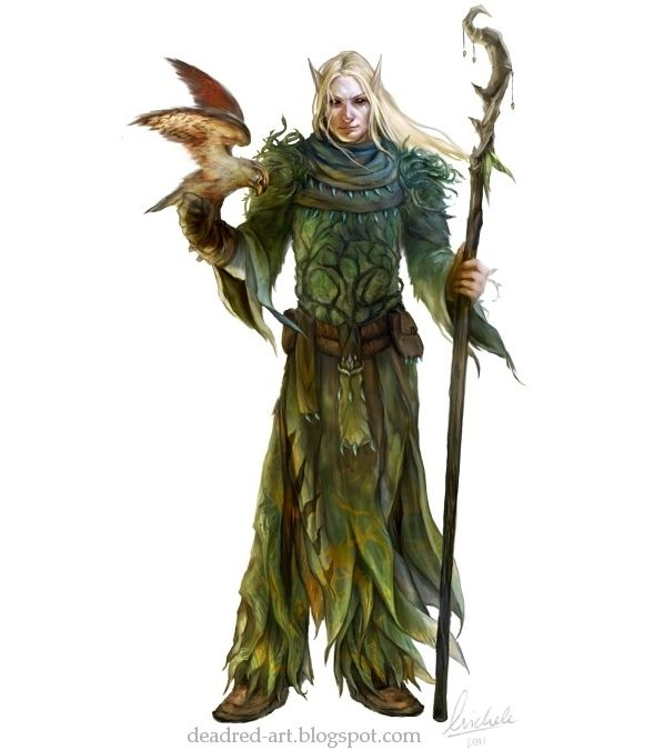 Pin By Isobel On Isobel May Ledden In 2019: M High Elf Druid Leather Armor Staff Hawk Forest Hills