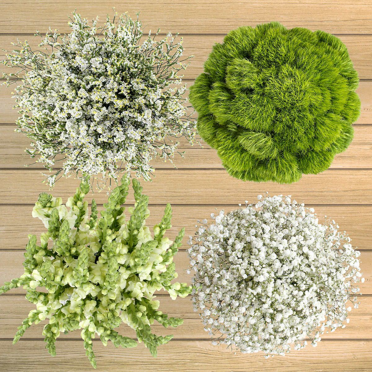 100 Stem White And Green Fillers Costco Flowers Red White