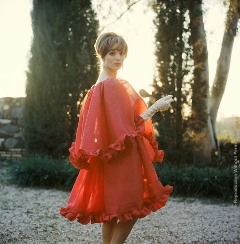 MARK SHAW Elsa Martinelli in Red Chiffon, c. 1960