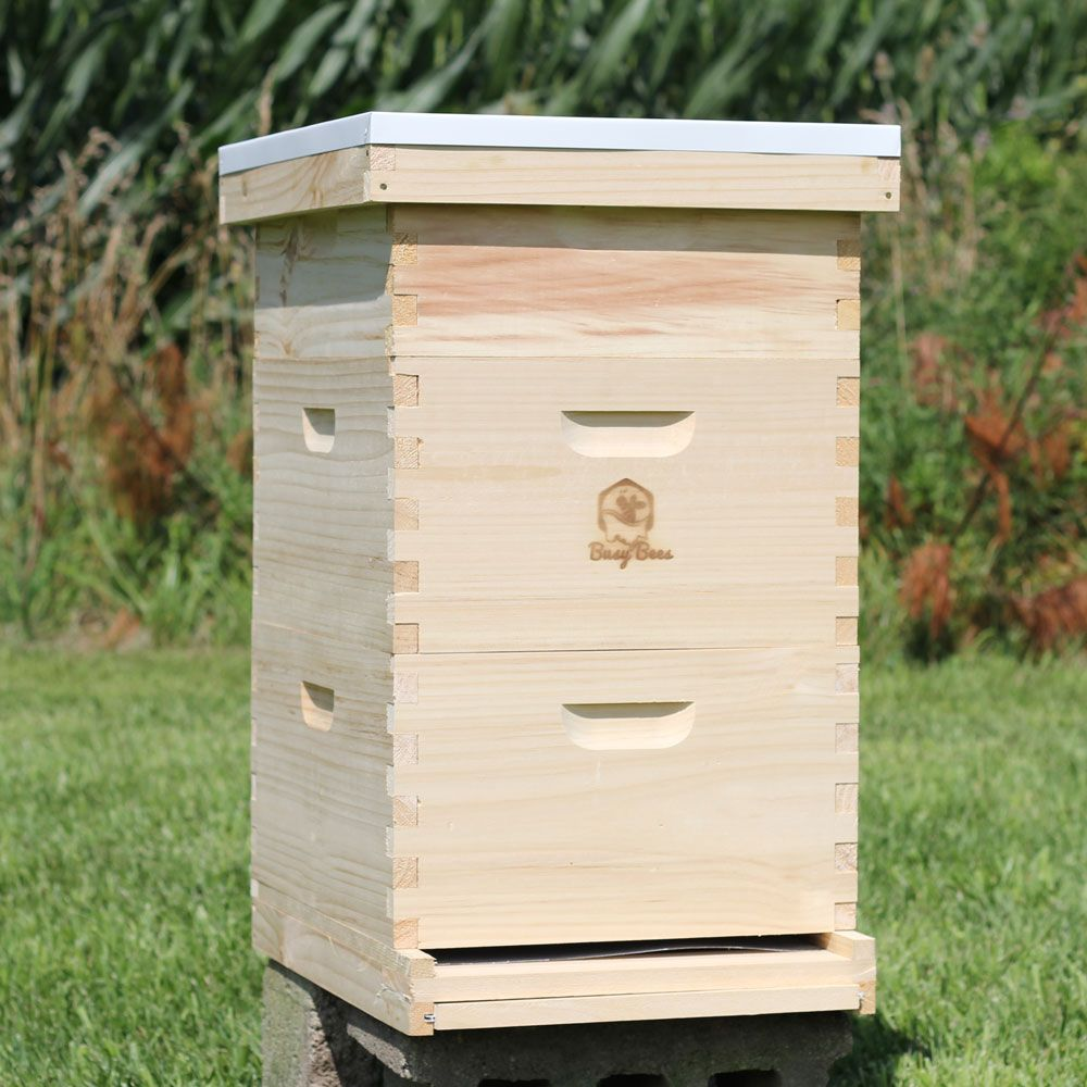 Starter Bee Hive Complete Kit For Honey Production Free Shipping Bee Keeping Bee Hive Backyard Bee