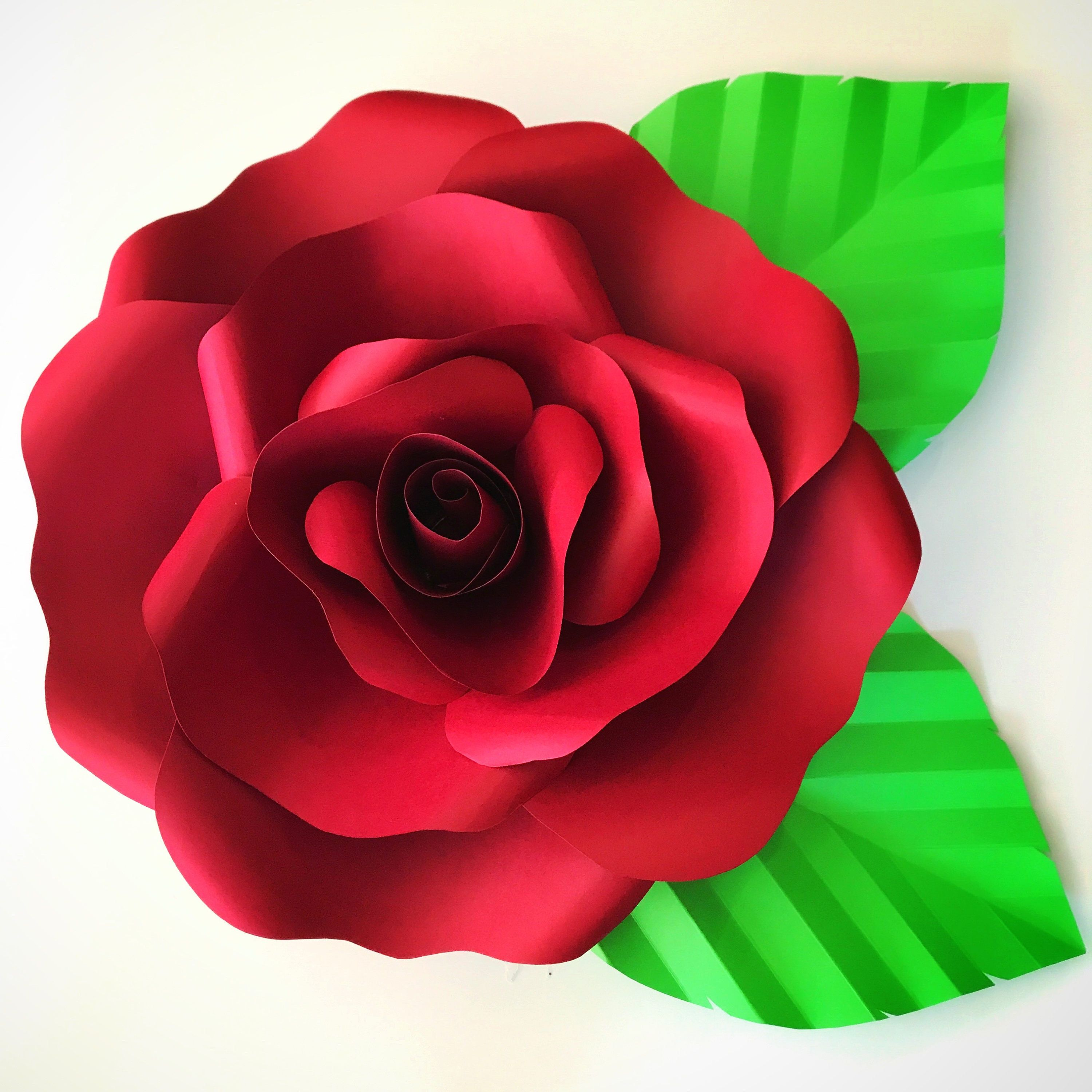 Paper Flowers SVG File for Open Rose 2 Paper flowers