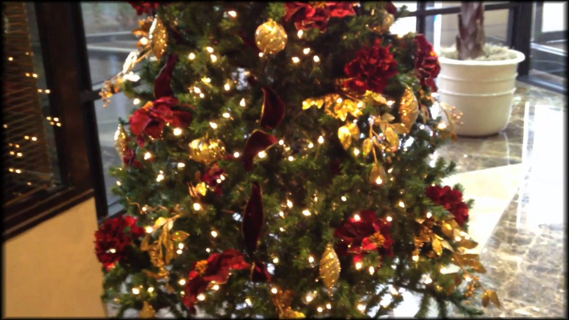 Learn how to decorate a Christmas tree professionally with Stacy