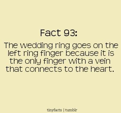 Interesting Fact Love And Marriage