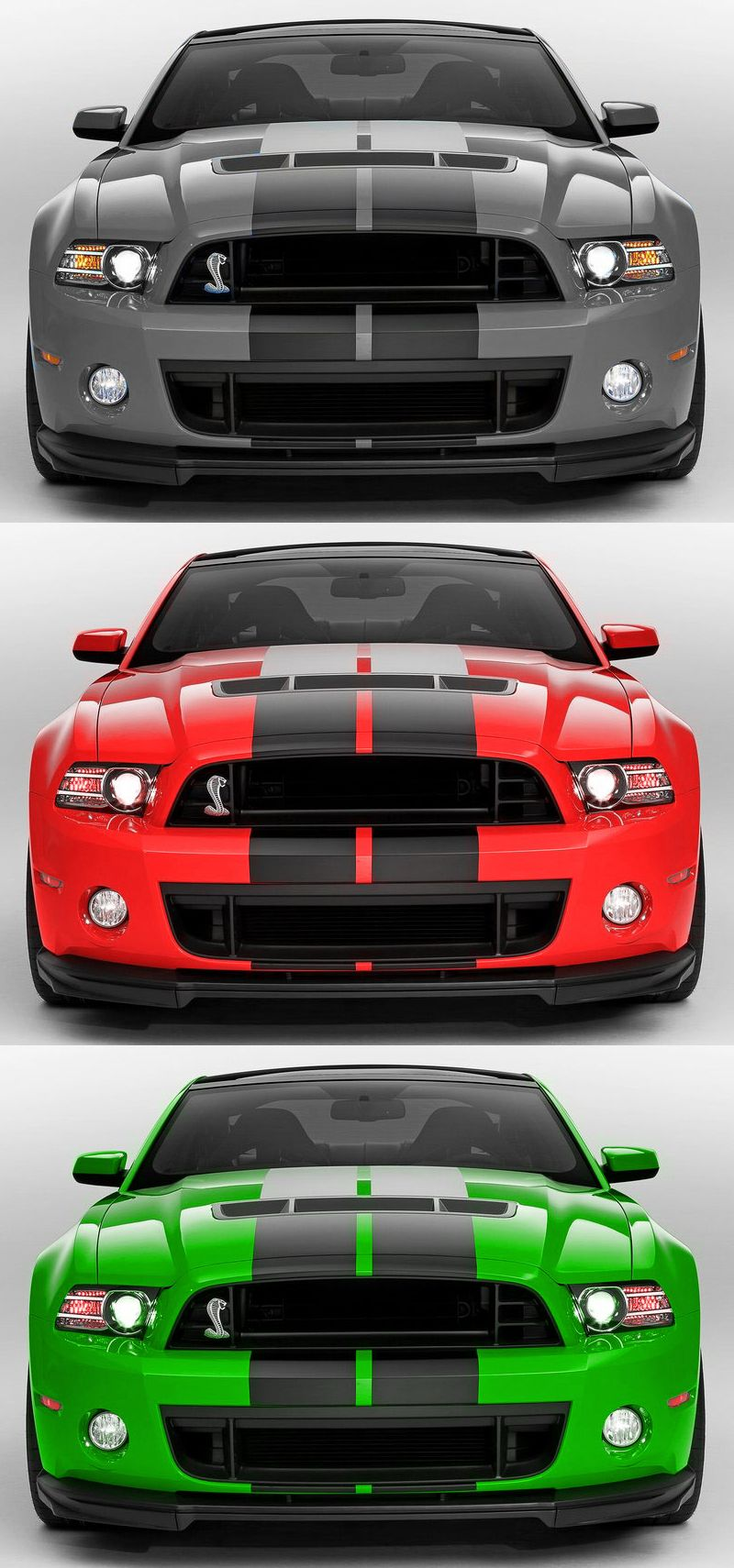 Shelby Mustangs Sport Cars Mustang Cars