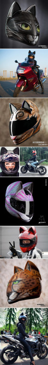 This Neko Helmet must be the one that approved by batman and...