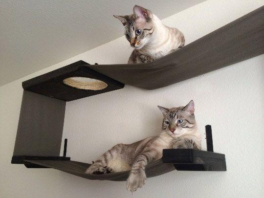 stoff cat maze katze h ngematte regale katze pinterest katzen katzen h ngematte und neue wege. Black Bedroom Furniture Sets. Home Design Ideas