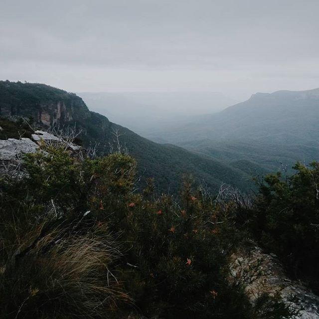 Blue Mountains Vistas Willow Co On Instagram Http Willowand Co Bluemountains Leura Katoomba Mountains A Instagram The Blue Mountains Blue Mountain
