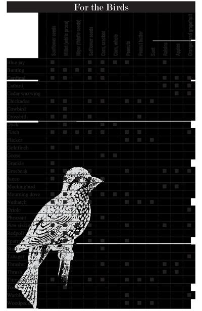 Bird seed buying guide at menards®.