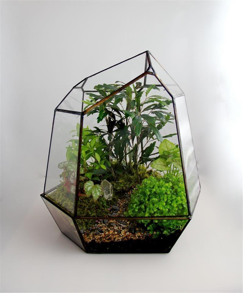 Botanic Design Installation Flora Terrarium Glass Terrarium