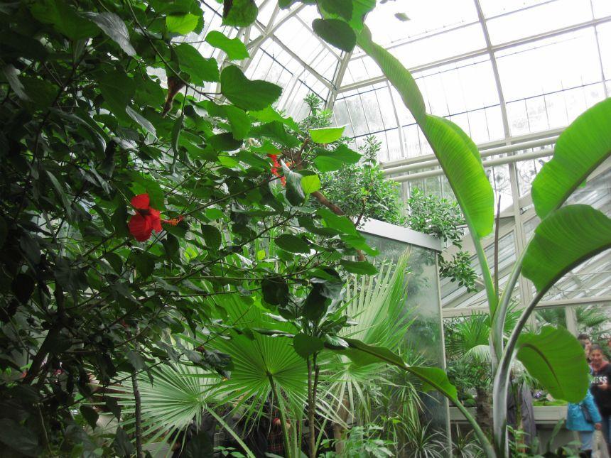 Danas svečano otvorena Botanička bašta: Naučno-istraživačka baza i mirna oaza! (FOTO)