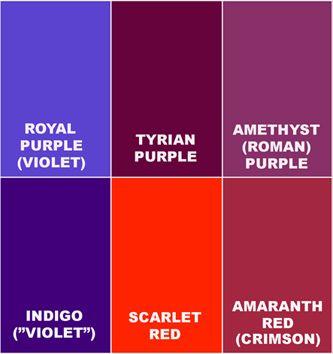 Violet Vs Indigo Purple