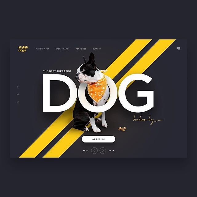 "THEUIUXCOLLECTIVE® on Instagram: ""Dog Adoption Website 😍👌🏻 