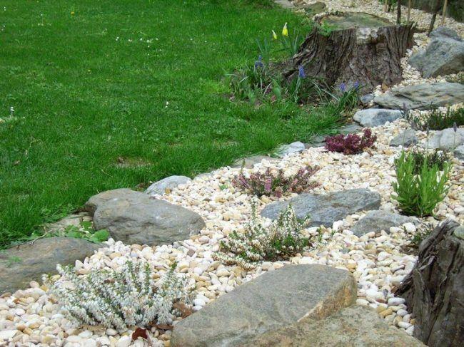 steingarten felsen kies flache steine stauden | garten | pinterest, Gartenarbeit ideen