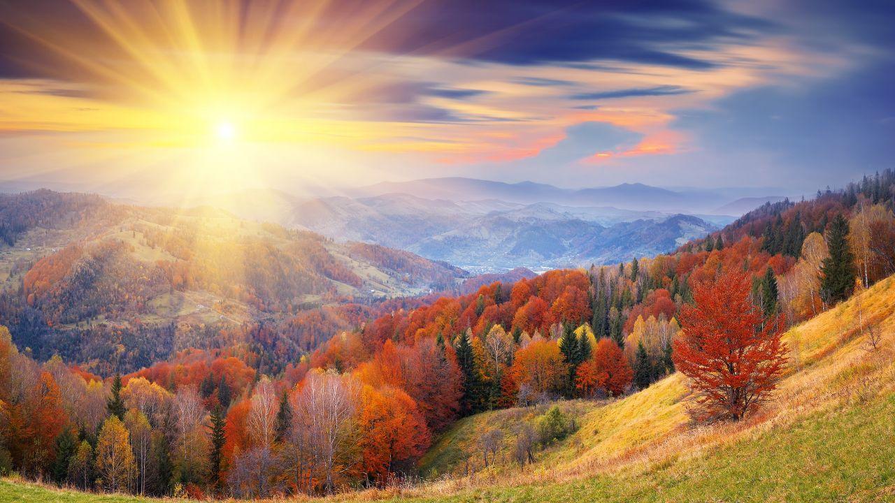 Autumn 4k Hd Wallpaper 8k Trees Dawn Mount Coloring