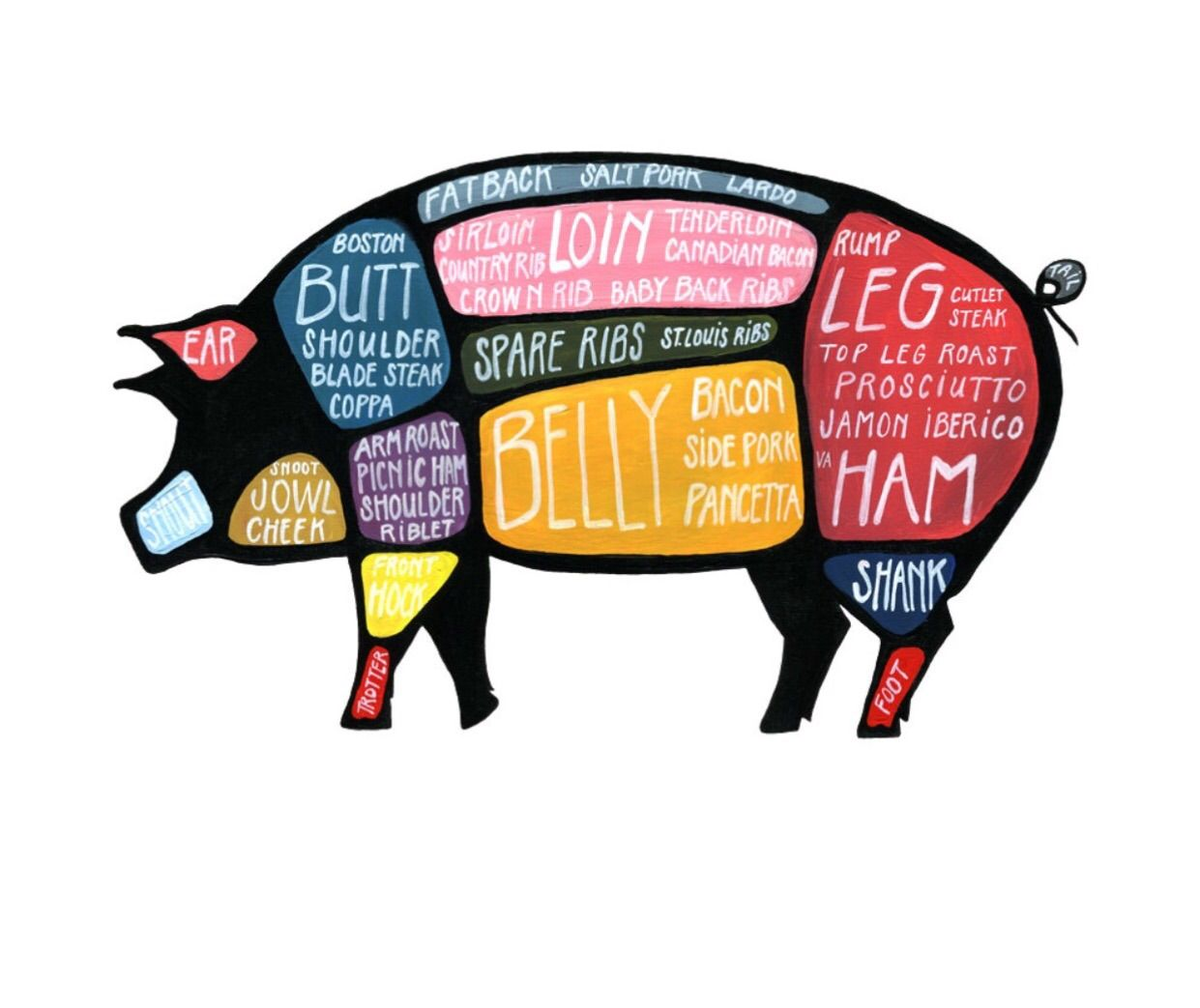 pig butcher diagram use every part of the pig detailed cuts of use every part pig diagram [ 1241 x 1043 Pixel ]