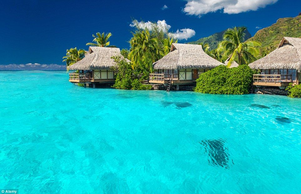 E Tahiti Travel Reviews